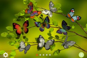 PixelPunch - Paint me a butterfly (2-garden)