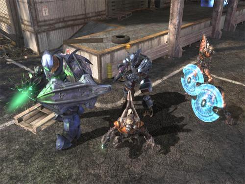 Halo-covenant_group